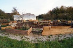 Vegetable garden for therapeutic use